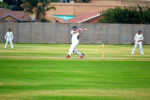 cricket-668392_960_720